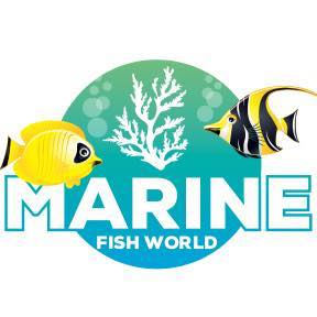 Marine Fish World